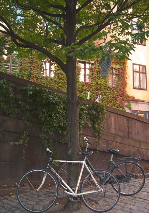poze-stockholm-biciclete-3