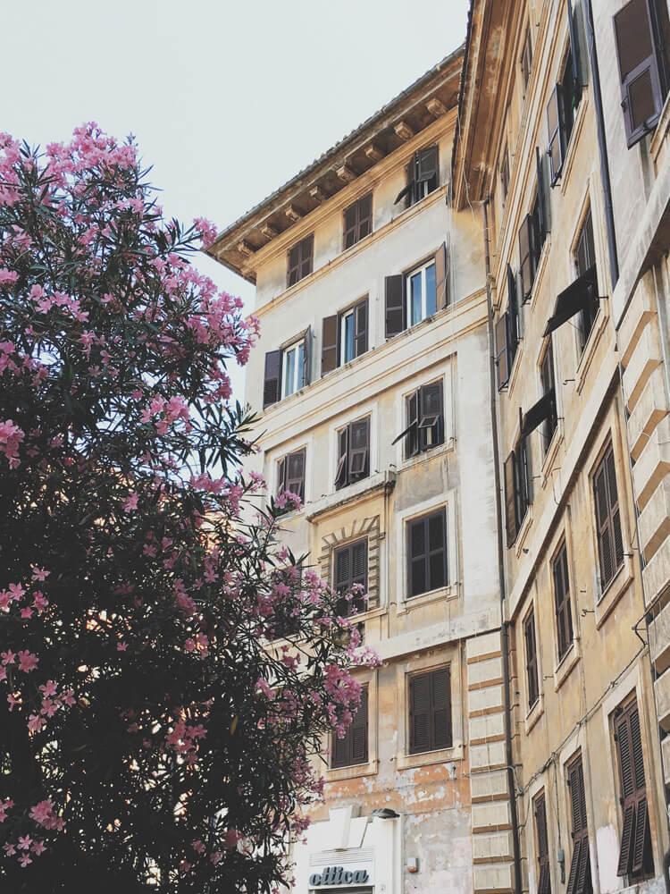 roma-arhitectura-14