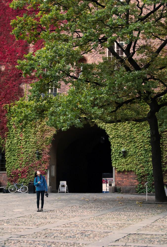 stockholm-oameni-3