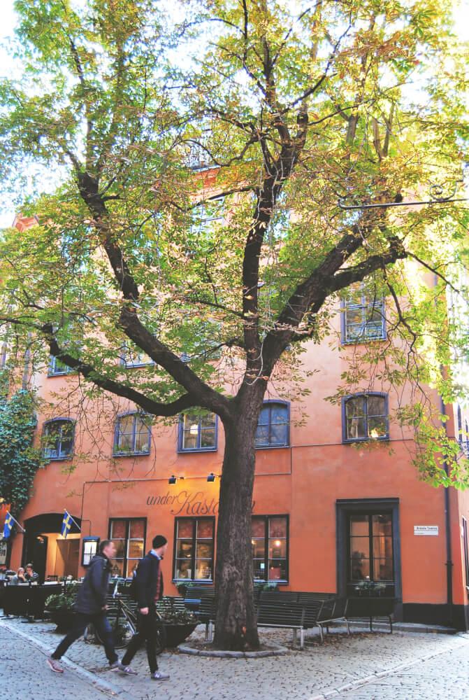 stockholm-oameni-8